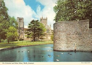 B102118-the-cathedral-and-palace-moat-wells-somerset-uk
