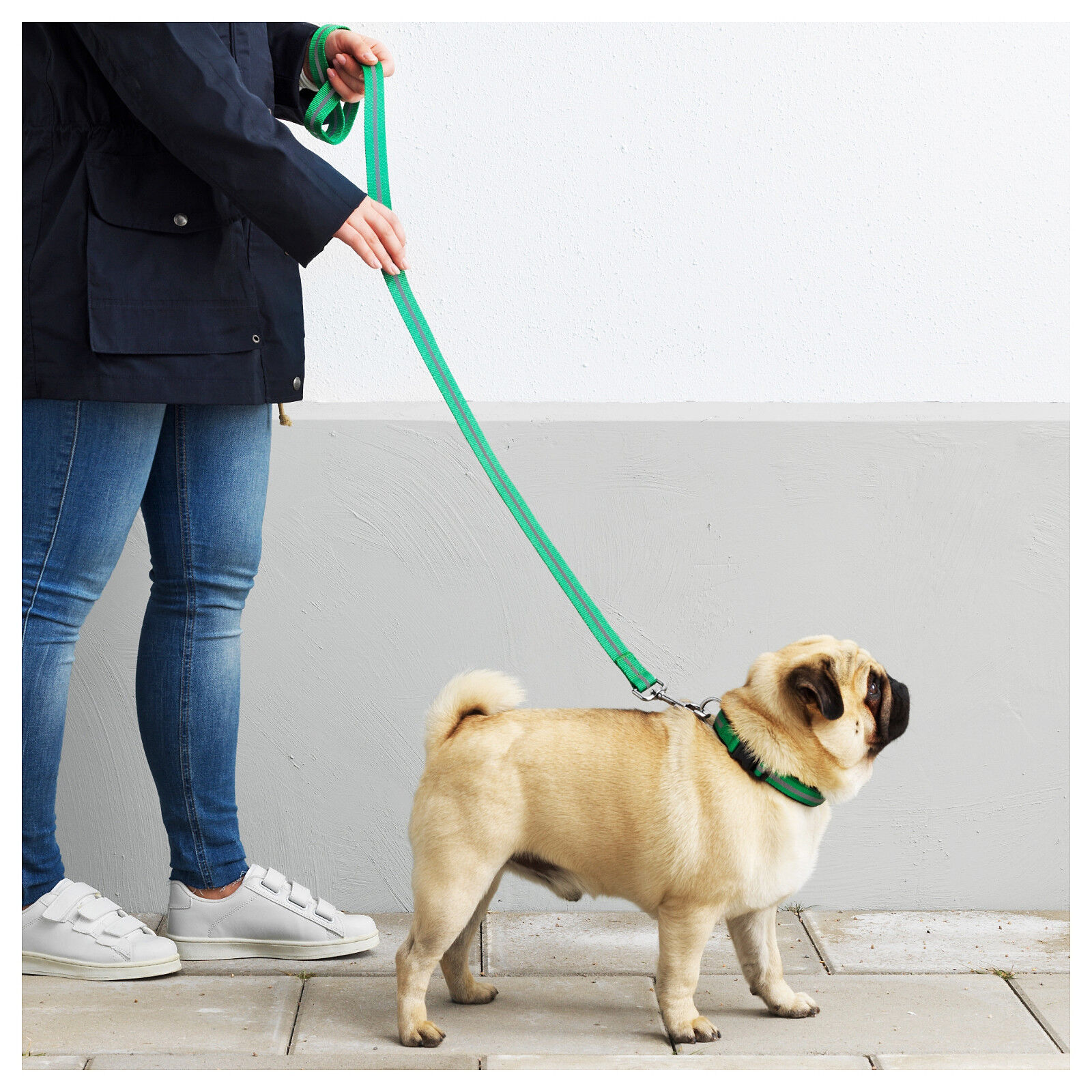 New Reflective Leash 48 ½       123 cm and Padded Collar for Medium and Large Dogs 569611