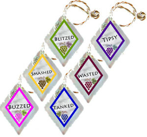 Recycled-Frosted-Window-Glass-Wine-Charms-Set-of-6-Buzzed-Smashed-Blitzed-Tipsy