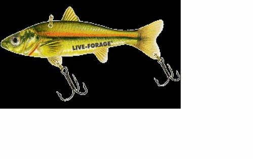 Northland Fish Fry  Ice Fishing Glow Dace Chub FFMT3-24