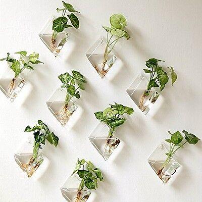 Hanging Plant Flower Glass Vase Terrarium Wall Fish Tank Aquarium Container  GD