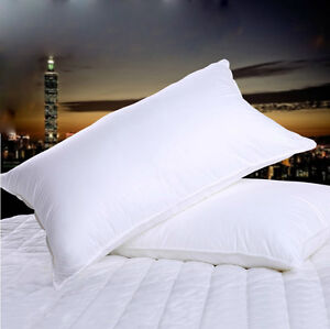 100-Hungarian-Goose-Down-Filled-Pillow-1800TC-White-100-Egyptian-Cotton-Cover