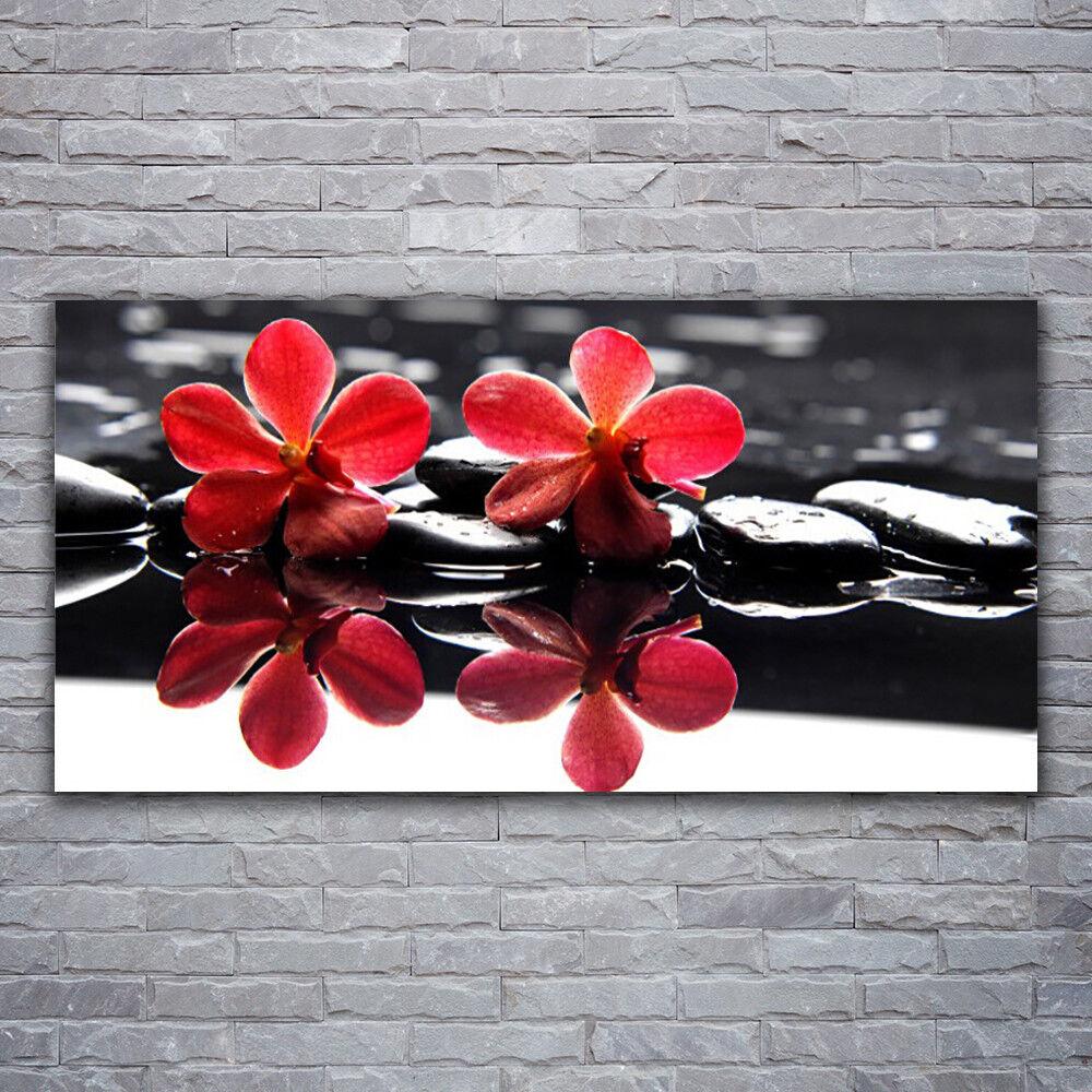 Photo sur toile Tableau Image Impression 120x60 Floral Fleurs Pierres