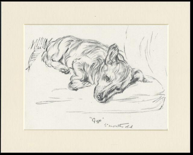 SLEEPING WELSH CORGI 1930'S DOG ART PRINT by MAC LUCY DAWSON READY MOUNTED