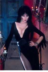 "Elvira Mistress Of The Dark Movie Poster Photo Fridge Magnet 2/""x 3/"" Collectibles"
