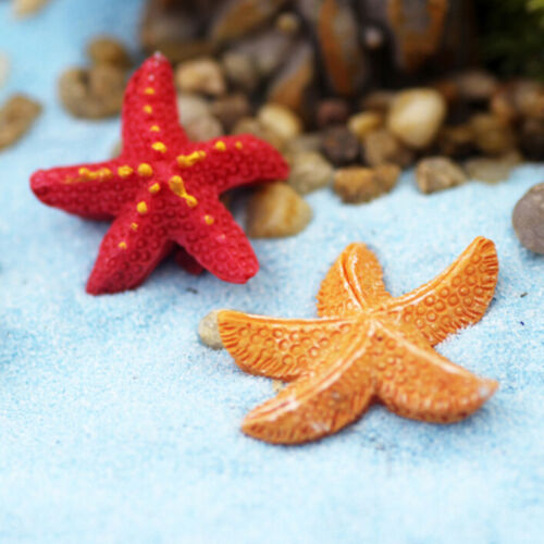 Starfish Miniatures Fairy Garden Micro Landscapes Resin Crafts Accessories G$