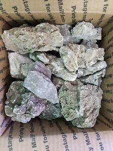 10 LB Packagage Aquascaping ADA Seiryu Stone - Read ...