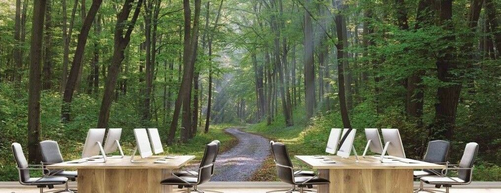 Winding Gravel Road 21' x 8' (6,40m x 2,44m)-Wall Mural