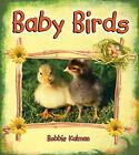 Baby Birds by Bobbie Kalman (Paperback, 2008)