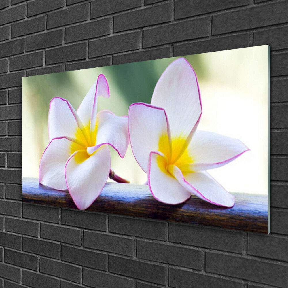 Print on Glass Wall art 100x50 Picture Image Image Image Flowers Floral fa25b7
