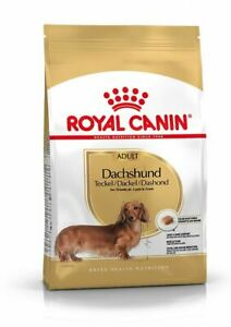 Je pense chiens adultes Teckel (à partir de 10 mois) Royal Canin teckel adulte