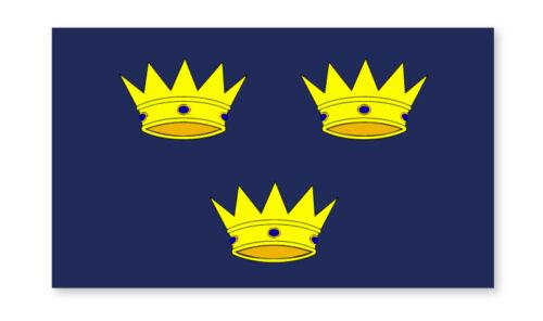 2 X FLAG MUNSTER EMBLEM IRELAND SELF ADHESIVE STICKERS CAR VAN TRUCK TAXI