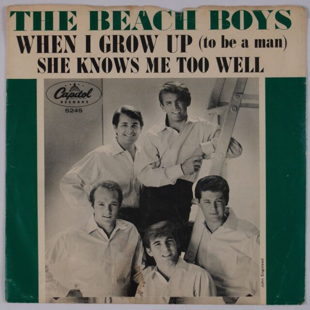 THE BEACH BOYS: When I Grow Up / She Knows Me CAPITOL 5245 45 w/ PS