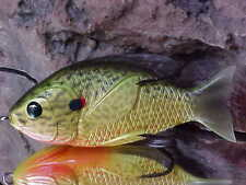 """Koppers 3 1//2/"""" Live Target Hollow Body Surface SUNFISH SFH90T558 for Bass//Pike"""
