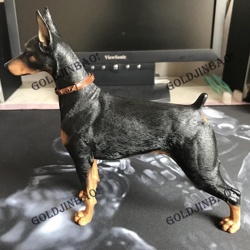 Dobermann 1 6 Scale Resin Model Doll Accessories Dog Statue MR.Z Display New