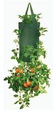 Vertical Herbs Flowers Seedlings Fresh Salads Growing Hanging Barrel 30 Plants
