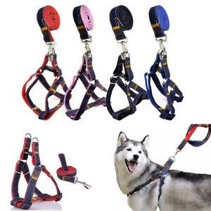 Pettorina imbracatura per cane cani regolabile guinzaglio media taglia collare