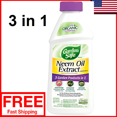 Garden Safe Neem Oil Extract Concentrate 16 Fl Oz Organic Insect Plant Formula 696597278061 Ebay