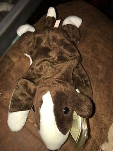 TY Beanie Baby ~ BRUNO the Bull Terrier Dog ~ Retired with several tag ERRORS