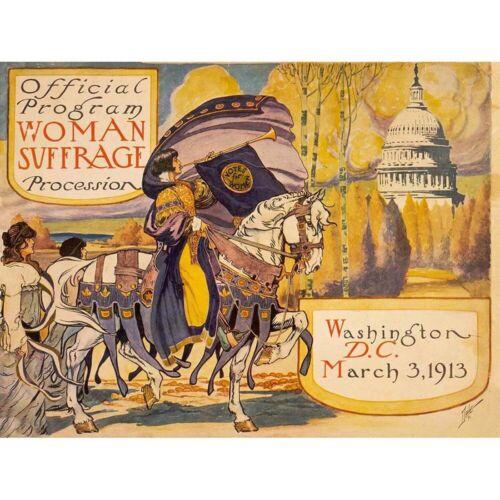 Propaganda Civil Rights Woman Suffrage Washington 12X16 Inch Framed Art Print