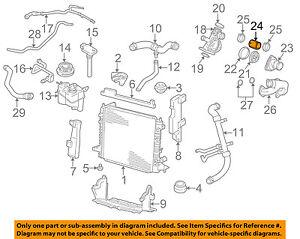 Radiator Coolant Hose-Molded Radiator Hose fits 00-02 Jaguar S-Type 4.0L-V8