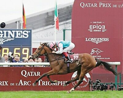 ENABLE 20 RIDDEN BY FRANKIE DETTORI KEYRINGS-MUGS-PHOTOGRAPHS HORSE RACING