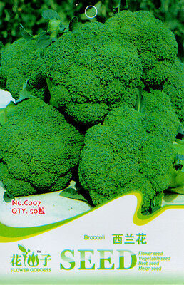 1 Pack 50 Broccoli Seeds Brassica Oleracea Cauliflower Garden Vegetable C007