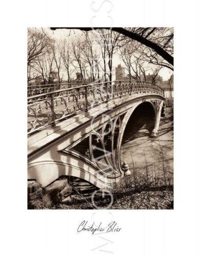 """CENTRAL PARK BRIDGES BLISS CHRIS ART PRINT POSTER 14/"""" X 11/"""" 3 1889"""