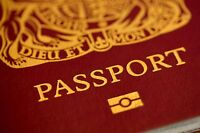 Established Passport Business Website for sale | 100% Outsource