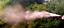 Indexbild 2 - HelpMe Tierabwehr-Pfefferspray 50ml - Stinkstoff & Pfeffer einzigartige Schärfe