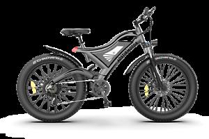 GLW Electric Mountain Bike 750W Motor 48V11.6Ah Battery Fat Tire Full Suspension
