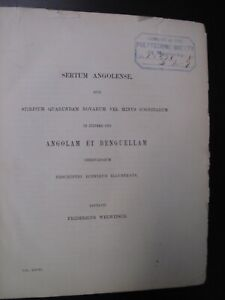 Original-1869-Angola-Botany-Plants-26-Litho-Illus-Linnean-Society-South-Africa