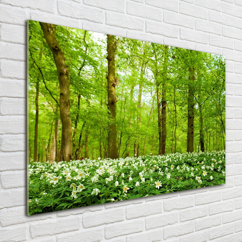 Acrylglas-Bild Wandbilder Druck 100x70 Deko Landschaften Blaumen im Wald