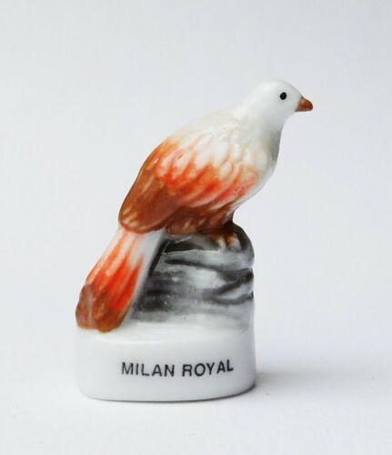 Fève oiseau Milan royal WWF CHAMPION