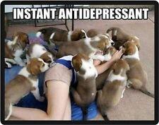 Funny Dog Humor Instant Antidepressant Refrigerator Magnet