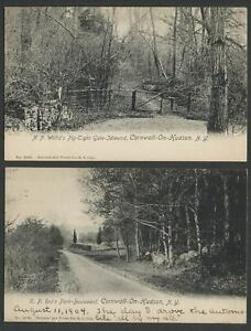 Cornwall-On-Hudson-NY-Two-c-1904-Postcards-N-P-WILLIS-E-P-ROE-Estate-Scenes