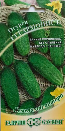 F1 GARMONIST Russian Seeds Cucumber