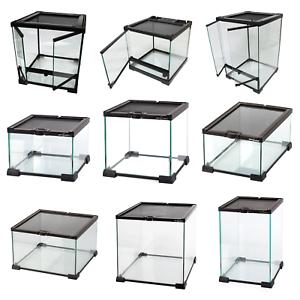 Reptile-Glass-Stackable-Terrariums-Vivariums-Nano-Habitats-Multiple-Sizes