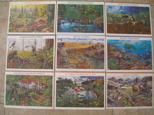 NATURE OF AMERICA SERIES Sheets Stamps Sonoran Rain Forest Prairie Tundra Coral