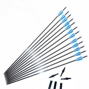 "Fibreglass arrows 28/""-31.5/""Archery Arrows Screw Tip broadhead for Bow Hunting"