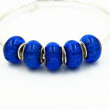 5pcs fashion  resin  charm Beads fit 925 silver European Bracelet Chain  k23