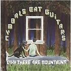 Cymbals Eat Guitars - Why There Are Mountains (2009)