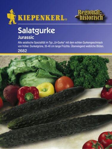 "/"" Jurassic /"" Urgurke Historisch  Samen Sämereien Saatgut Rarität Salatgurke"