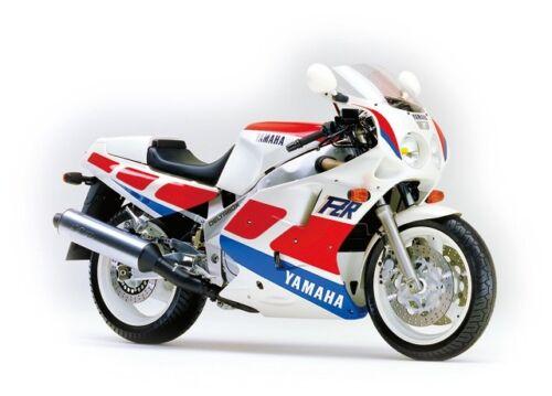 Yamaha FZR1000R 1987-1995 large headed stainless steel screen fairing bolts kit
