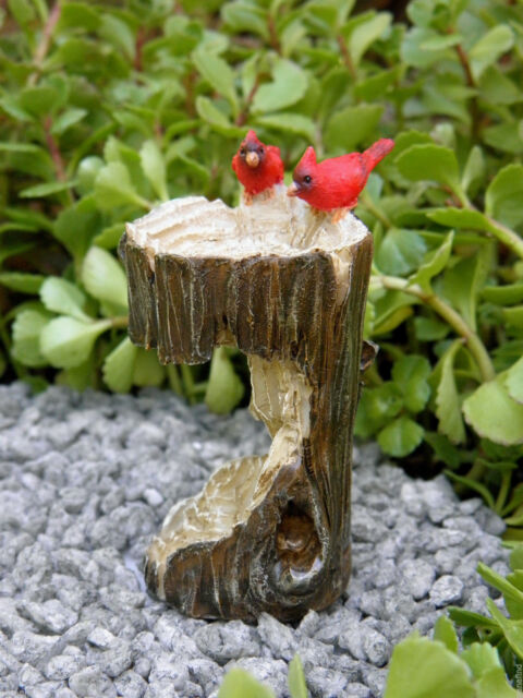 top collection 4380 miniature fairy garden terrarium mini stump bird bath with - Fairy Garden Terrarium