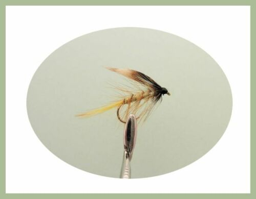 Slimline Magnetic Fly Box Boxed trout flies 36 Mixed Buzzer Wets /& Nymphs