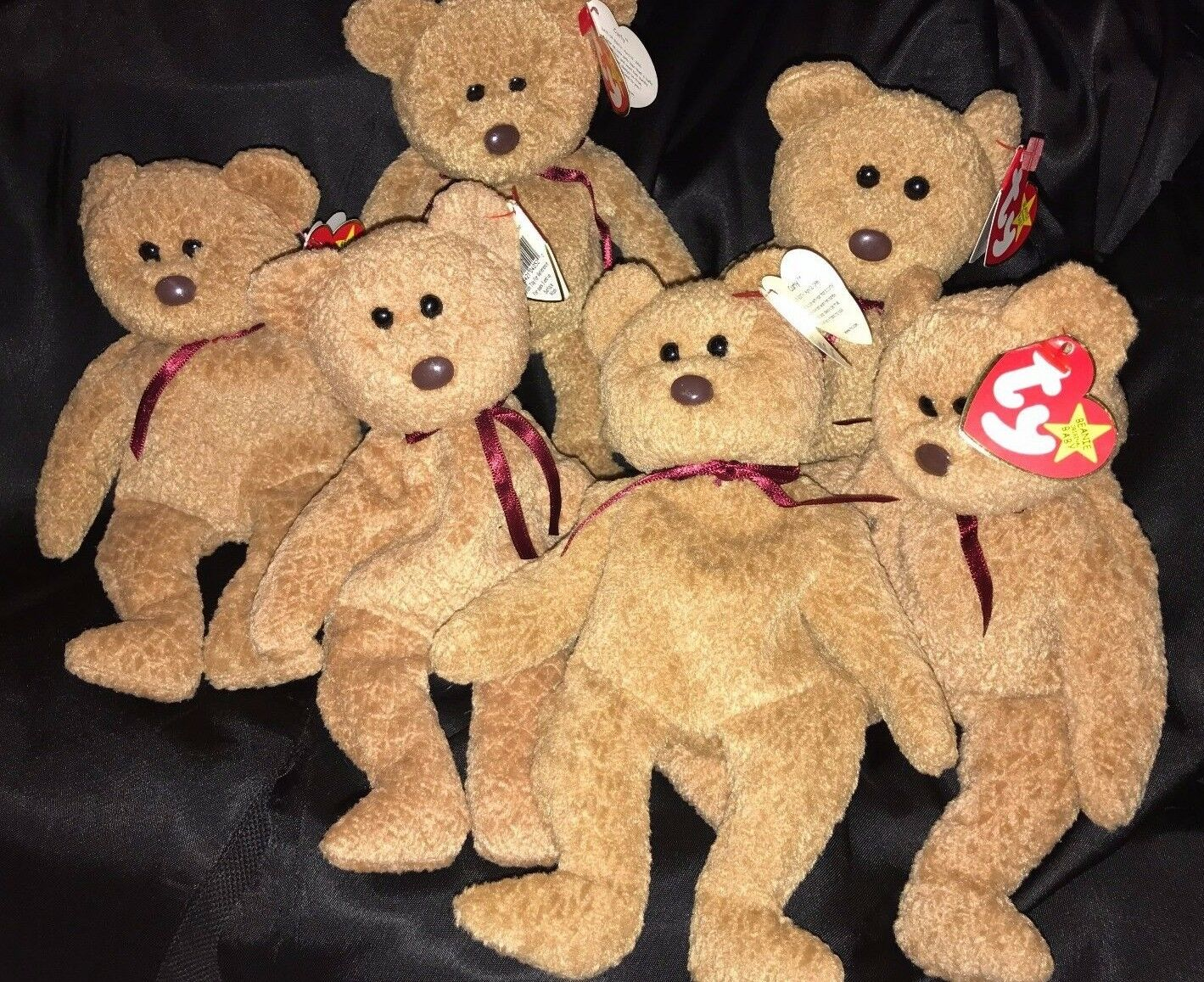Beautiful MINT SIX (6) CURLY BEAR Retired Ty Beanie Baby Collectible  RARE  1996