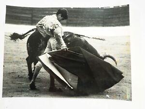 Torero-Jose-Antonio-Morante-de-la-Puebla-15-Anos-Viejo-Torero-8-x-10-Foto
