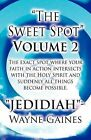 The Sweet Spot Volume 2: The Exact Spot Where Your Faith in Action Intersects with the Holy Spirit and Suddenly All Things Become Possible by Jedidiah  - Wayne Gaines (Paperback / softback, 2012)