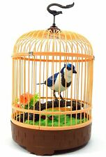 Singing & Chirping Bird In Cage - Realistic Sounds & Movements BLUE BC507D